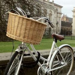 Bicycle and Senate House